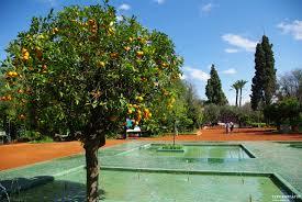 top most beautiful gardens in marrakech u2013 marrakech real estate