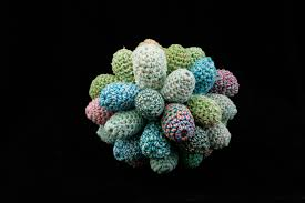 what happens when you mix math coral and crochet it u0027s mind blowing