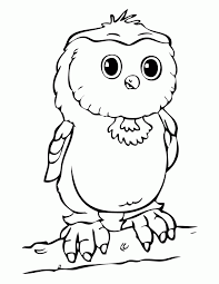 28 coloring pages baby owls baby owl coloring baby