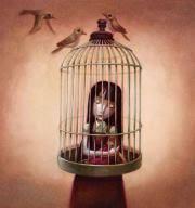 uccelli in gabbia in gabbia come un uccello in gabbiami lascio catturare da