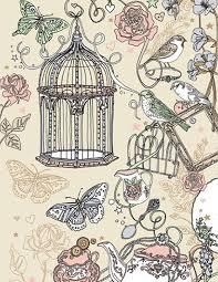 Bird Cage Decoration Drawn Birdcage Decoration Pencil And In Color Drawn Birdcage