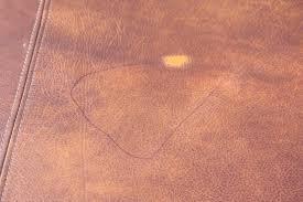 how to get nail varnish off leather sofa memsaheb net