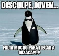 Pingu Memes - disculpe joven pingu meme on memegen