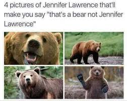 Lawrence Meme - 4 pictures of jennifer lawrence that ll make you say that s a bear