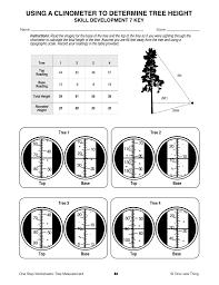 Aa Step 10 Worksheet Tree Measurement One Step Worksheets One Less Thing
