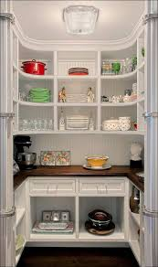 Lowes Kitchen Cabinet Design Tool by Kitchen Pantry Cabinet Ideas Pantry Storage Cabinet Pantry