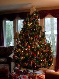 10 tannenbaum christmas tree farm milford iowa displaying
