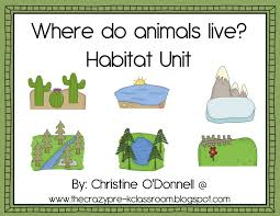 Pre K Classroom Floor Plan The Crazy Pre K Classroom Animal And Habitat Teaching Ideas For