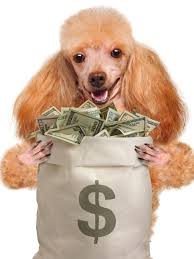 Which State Has The Most Dog Owners Per Capita According To 2016 Stats This Is How Much It Really Costs To Own A Dog Per Year