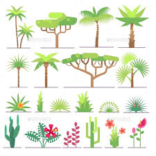 different types of trees different types of tropical plants trees flowers by microvone