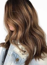 brondie hair hair color mane interest