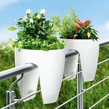 cool white railing planter white rose chili plant metal fence
