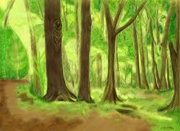 forest backdrop forest backdrop by rihouston on deviantart