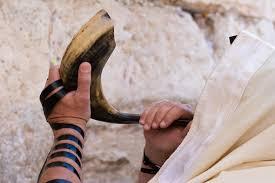 how much is a shofar shofar grace in torah