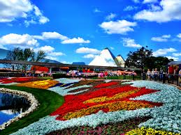 photo highlights of the epcot flower and garden festival zannaland
