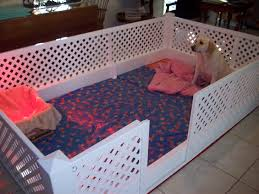 images about for the dogs on pinterest dog kennels diy puppy