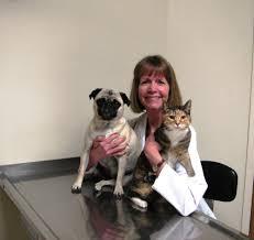 Powder Room Chico Ca Evers Veterinary Clinic 19 Reviews Veterinarians 1150 El