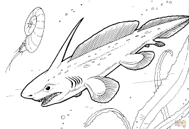 pleuracanthus prehistoric shark coloring page free printable