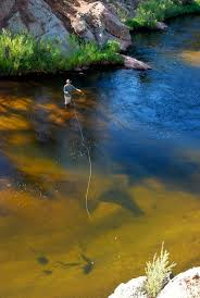 43 best fly fishing in bend oregon images on pinterest fishing