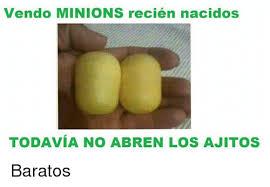 Minions Memes En Espaã Ol - vendo minions recién nacidos todavia no abren los ajitos baratos