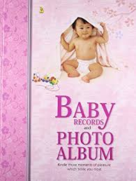 Baby Photo Album Buy Baby U0027s First Year Photo Gallery Album With 12 Monthly Photo