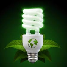 make your home more eco friendly follow green living