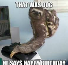 Fitness Sloth Meme - happy birthday meme funny birthday meme images