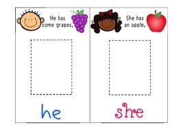 she him her pronoun activity for grammar and language comprehension