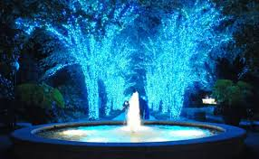 Botanical Gardens Atlanta Lights Garden Lights Nights At Atlanta Botanical Garden Giveaway