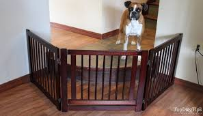 don u0027t buy indoor pet gates for dogs before reading this
