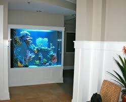 best fish aquarium home design gallery amazing design ideas