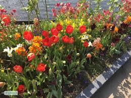 the fantastic yeomiji botanical garden funtastic korea blog