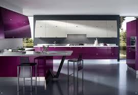 cuisine pourpre violet cuisine