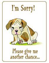 i am sorry greeting cards search greeting cards