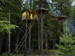 Cool Tree Houses 236 Best Tree Houses Extraordinary Images On Pinterest