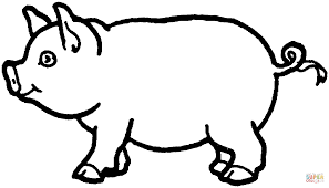 swine coloring page free printable coloring pages