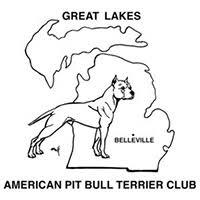 american pitbull terrier kennels in michigan the great lakes american pit bull terrier club michigan