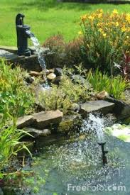 Diy Backyard Ponds 9 Relaxing Diy Outdoor Ponds Shelterness