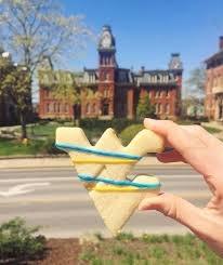 West Virginia travel divas images 48 best gold and blue treats for you images college jpg