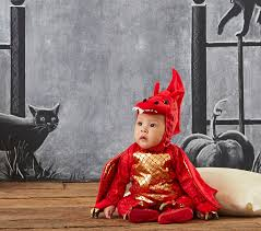 baby dragon costume pottery barn kids