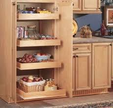 Kitchen Cabinet Accessories by 49 Best Kitchen Accessories Images On Pinterest Kitchen