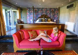 Interior Design Tricks Of The Trade Tricks Of The Trade Blogging As A Full Time Career The Road Les