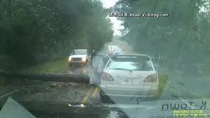 Michael Kitchen Falling Video Captures Car Slam Into Falling Tree Necn