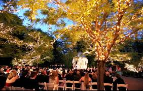 where is best place hold an outdoor wedding