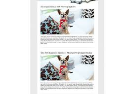 create email newsletter template how to design an email newsletter template in 7 simple steps