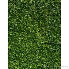 wedding backdrop green 2018 5x7ft green leaves wall wedding photography backdrops vinyl