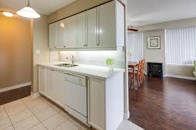 Cover Kitchen Cabinets After U2013 3 Rean Dr Cabinet Refinishing Spray Painting And