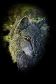 433 best lobos images on pinterest animals wolf spirit and