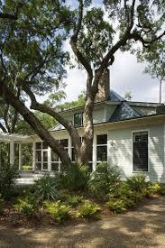 22 best palmetto bluff images on pinterest palmetto bluff live oak tree in yard at palmetto bluff