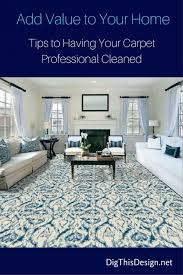 Professional Rug Cleaning Austin Best 25 Professional Carpet Cleaning Ideas On Pinterest Miele
